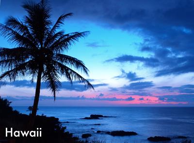 Hawaii Spirit