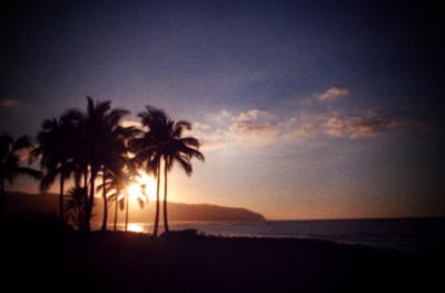 Discover Aloha