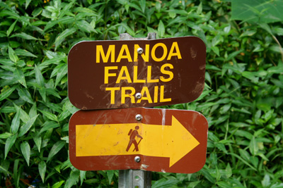 Manoa Falls Trailhead
